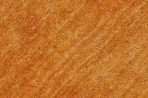 carpet-6127